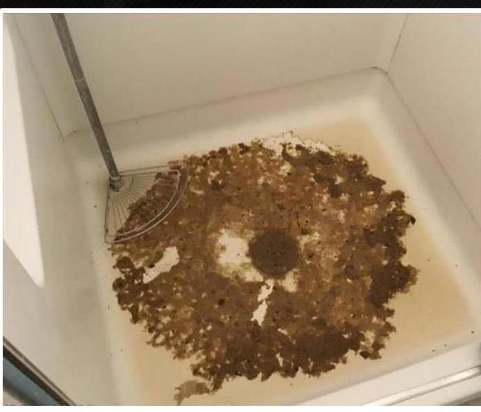 White shower stall with brownish green mold on the floor